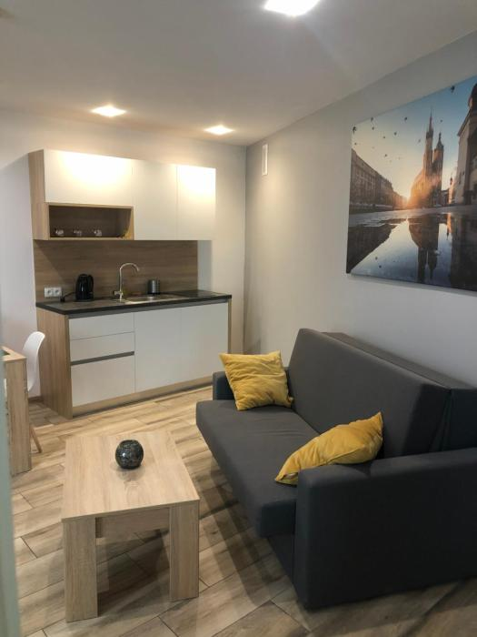 Modern apartment in the Krakow Old Town Bosacka 7