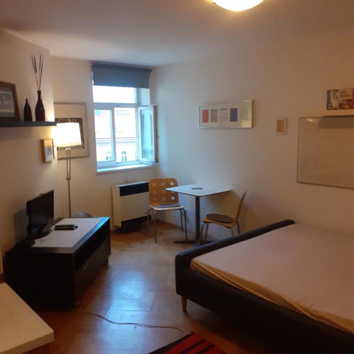 Luxury apartmen in City center