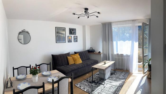 Apartament Mineralny