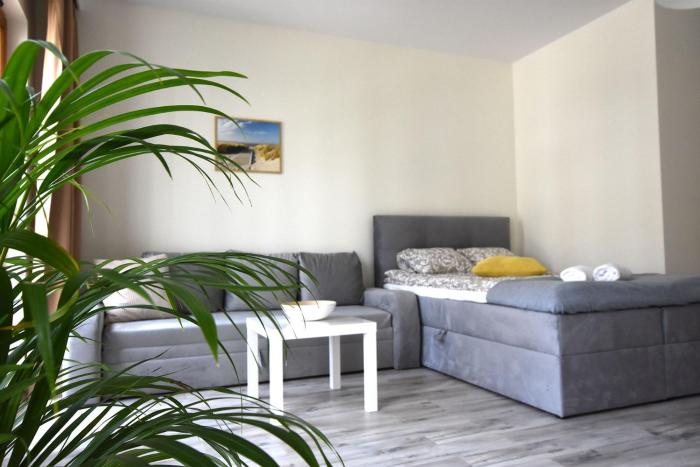 Beach Seashells Apartment