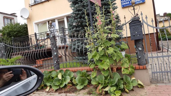 Pokoje Noclegowe Krystyna Tomaszewska
