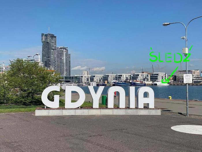 Śledź Gdynia YACHT PARK