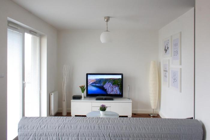 Apartament31