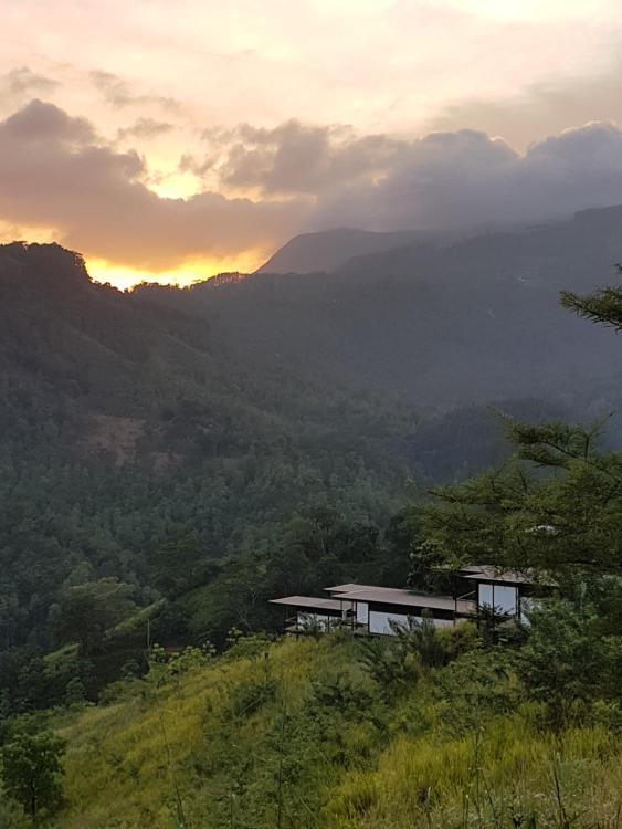 Werapitiya, Kandy, Sri Lanka.