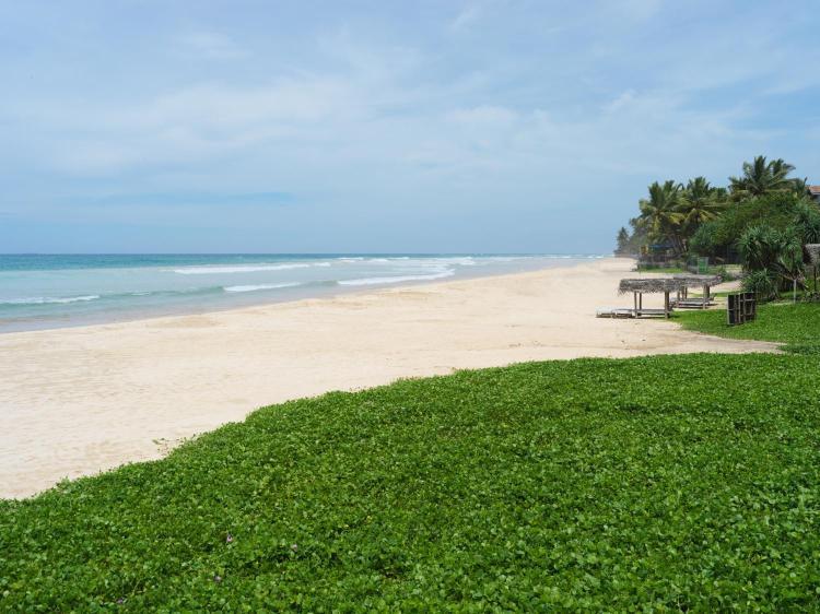 Matara Road, Ahangama 80650, Sri Lanka.