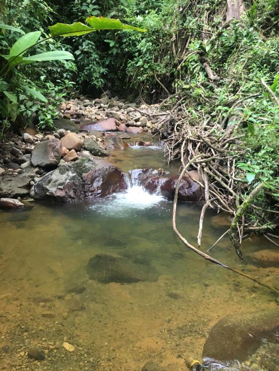 7 km oeste del centro de La Fortuna en la Ruta 142 camino al, Parque Nacional Volcán Arenal, Provincia de Alajuela, La Fortuna, 21007, Costa Rica.