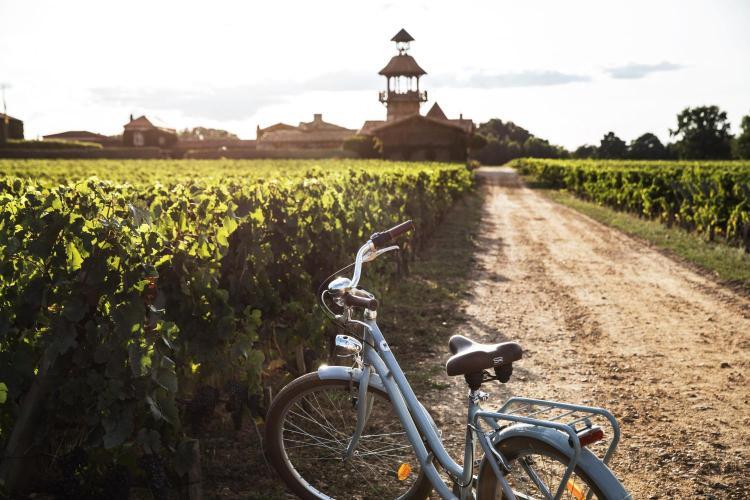 Chemin de Smith Haut Lafitte, 33650 Bordeaux Martillac, France.