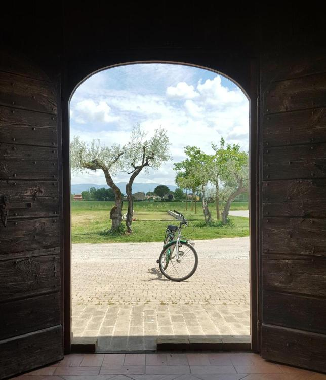 Via San Bernardino da Siena, 116 Santa Maria degli Angeli, Assisi PG, Umbria, Italy.