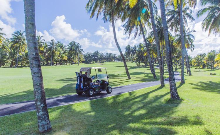 Coastal Road, Beau Champ, Mauritius.