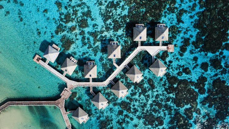 Tamanu, P.O. Box 380595, Tahiti, 97718, French Polynesia.