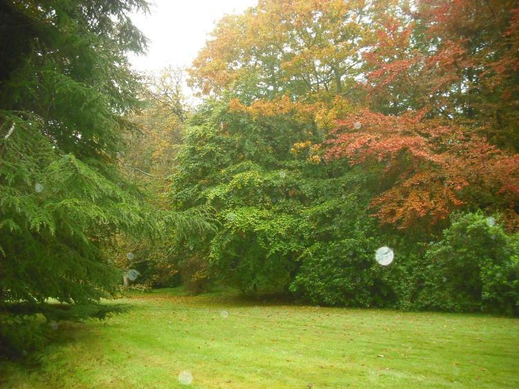 Haddington, East Lothian, EH41 3SS, Scotland.