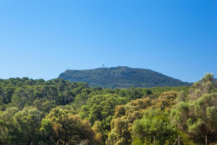 Cami de ses vinyes s/n 07210, Algaida, Majorca, Spain.