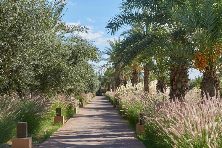 Route du Golf Royal, Palmeraie, 40000 Marrakech, Morocco.