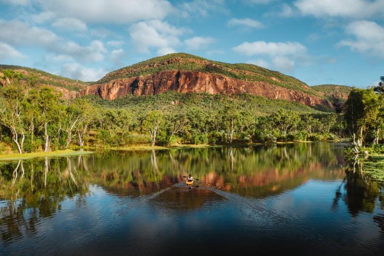 Mount Mulligan Station, Mount Mulligan QLD 4871, Australia.