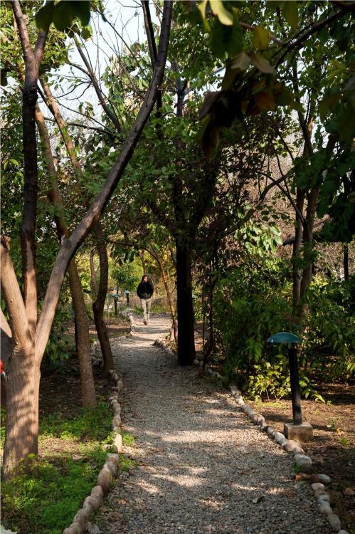 Village Dhela, Ramnagar, Corbett National Park, Ramnagar, Nainital, Uttarakhand 263001, India.