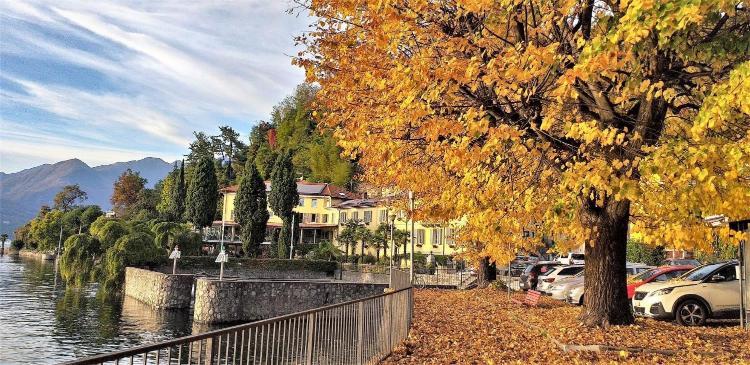 Via A. Palazzi 1, Luino, 21016.