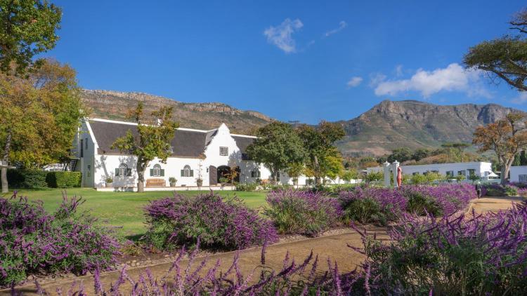 Steenberg Estate, Steenberg Road, Tokai, 7945, Cape Town, South Africa.