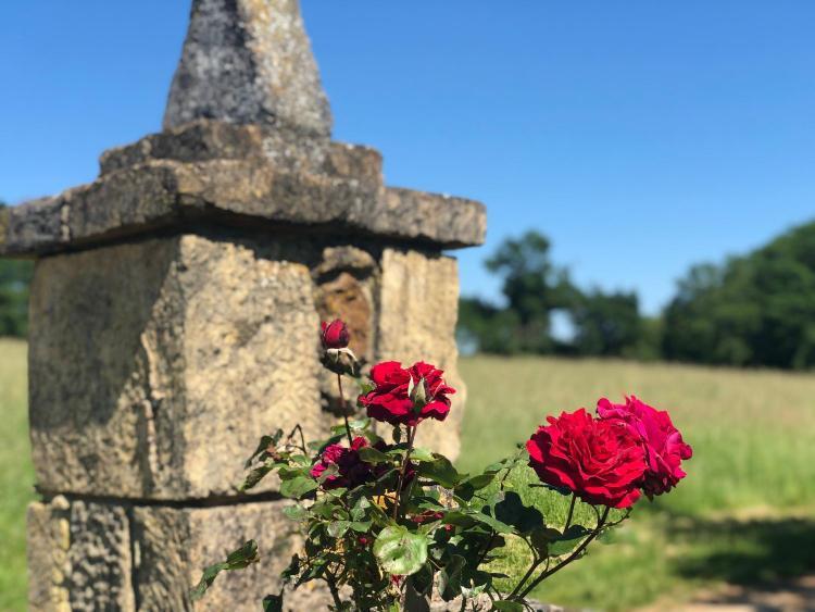 Lieu dit Le Mas, 24440, Sainte Croix, Dordogne, France.