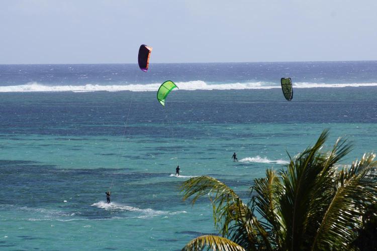 Allee des Cocotiers, Bel Ombre, Mauritius.