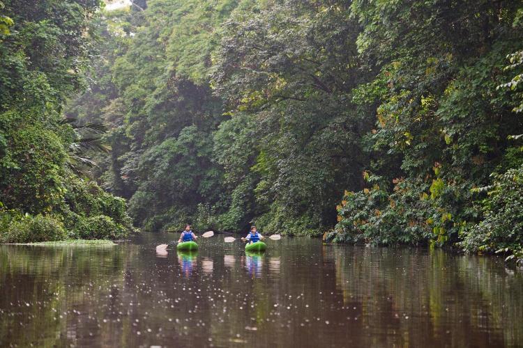 One mile north of Tortuguero City, 6941, Costa Rica.