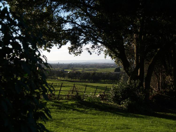 Lower Henlade, near Taunton, Somerset TA3 5NB, England.