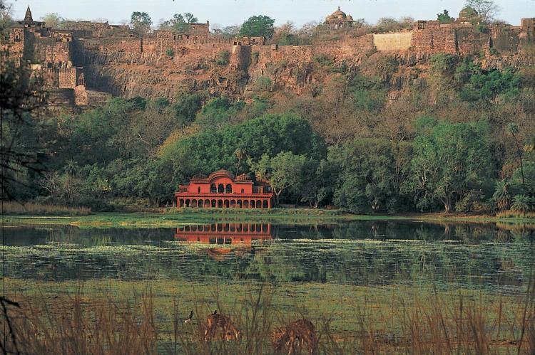 Ranthambhore Road, 322001 Sawāi Mādhopur, India.