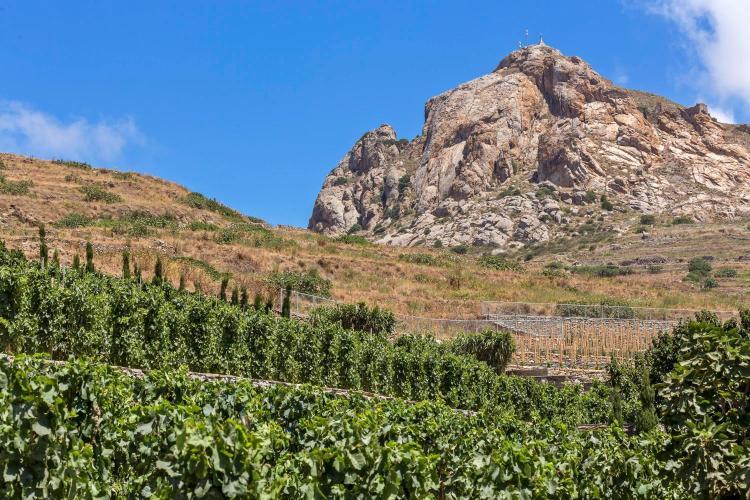 Tripotamos, Tinos Island, Cyclades, 84200, Greece.