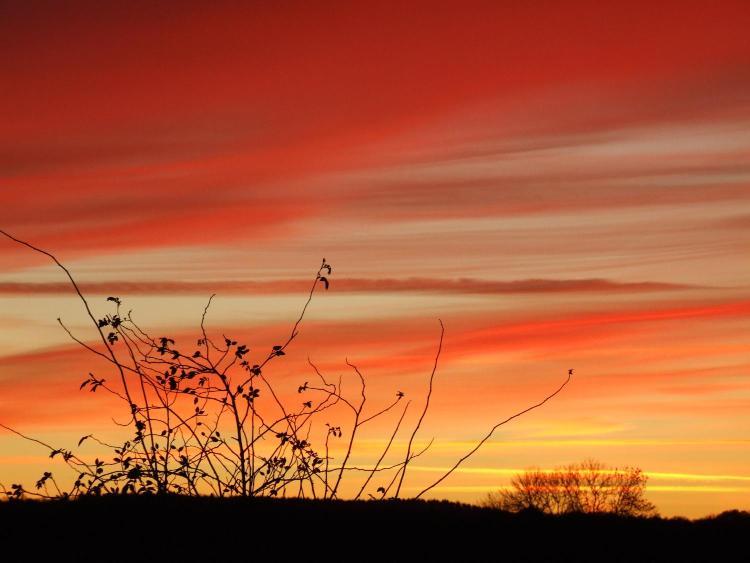 By Blairgowrie, Blairgowrie, PH10 6SG, Scotland.