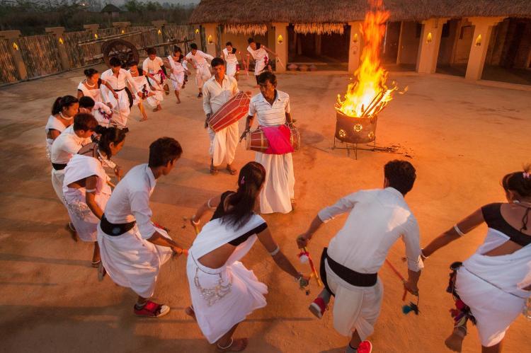 Meghauli, Ward no 1, Narayani Nager Palika, Chitwan National Park - 44207, Nepal.