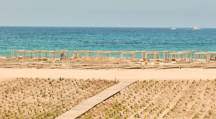 Plaka Beach, Naxos 84300, Cyclades, Greece.