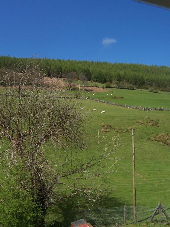 Glascwm Road, Penmachno, Betws-y-Coed, LL24 0PU, Wales.