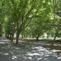 Green Park View -호텔 및 객실 사진