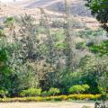 תמונות לחדר Bait Alfa Kibbutz Country Lodging