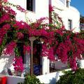 Anna Traditional Apartments - viesnīcas un istabu fotogrāfijas