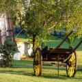 Hotel Rural A Coutada - hotelliin ja huoneeseen Valokuvat