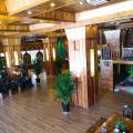 Peacock Princess Hotel -صور الفندق والغرفة