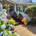 The Samoset - hotel and room photos