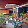 Aquarium Hotel - khách sạn và phòng hình ảnh