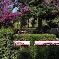 Fonda Las Palmeras - Hotel- und Zimmerausstattung Fotos