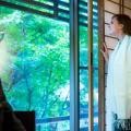 Hotel Miyajima Villa - hotel and room photos