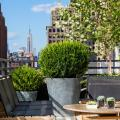 AKA Smyth Tribeca - hotel and room photos