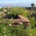 Ecolodge Quaryati Marrakech - Hotel- und Zimmerausstattung Fotos