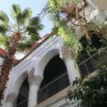 Dar Malak - otel ve Oda fotoğrafları