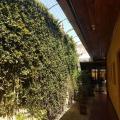 Hostal Sin Fronteras - hotellet bilder