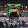 Paddy's Palms Resort - otel ve Oda fotoğrafları