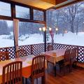 Okunikko Park Lodge Miyama - hotel and room photos