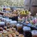 Melia Serengeti Lodge - fotografii hotel şi cameră