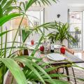 Sun&Plant Powered Nest ⚘ Typical Belém All Around - otel ve Oda fotoğrafları