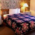 Arcady At the Sunderland Lodge - фотографии гостиницы и номеров