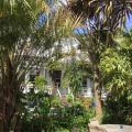 Cary Court - Guest House -صور الفندق والغرفة